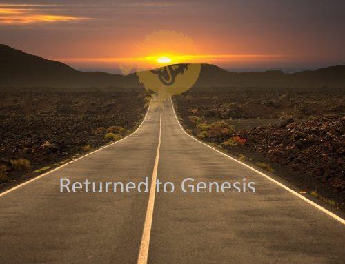 Genesis: Bitcoin is back